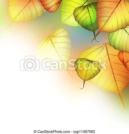 résumé, frontière, automne, leaves., automne, beau - csp11497063