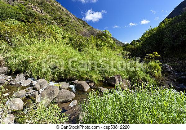 Iao Valley River, Maui, Hawaii - csp53812220