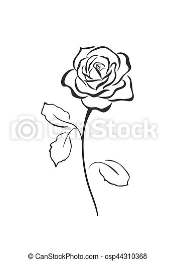 róża, wektor, kwiat, ikona - csp44310368