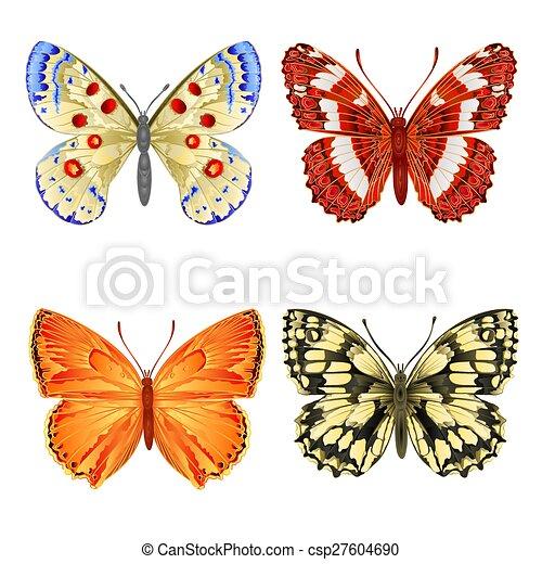 różny, motyle - csp27604690