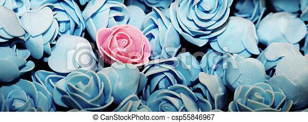 różowy, błękitny, dużo, róże, róża, sam - csp55846967