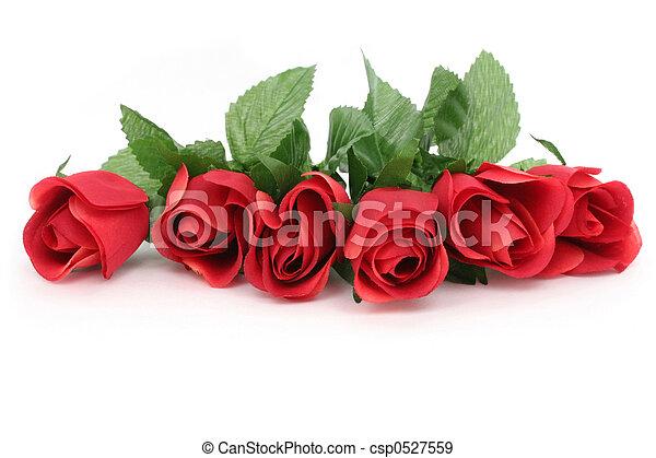 rózsa, piros - csp0527559