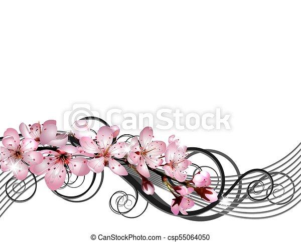 rózsaszínű, cseresznye, virágzás, sakura, elágazik, menstruáció - csp55064050