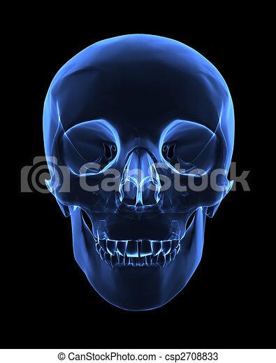 röntgenaufnahme, totenschädel - csp2708833