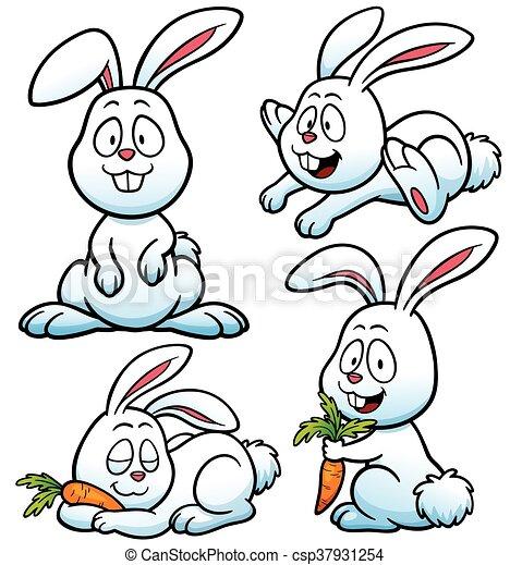 Rabbit - csp37931254