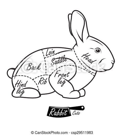 Fetal Pig Diagram in addition Why Do Jewish Dietary Laws Prohibit Pigs also Beef Steer Clip Art together with Stock Photo Beef Cuts Diagram Vector Illustration For Design Menu Restaurant Or 132041256 in addition Royalty Free Stock Photography Pork Beef Diagrams Image18746257. on pork meat cuts diagram