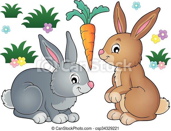 Rabbit topic image 1 - csp34329221