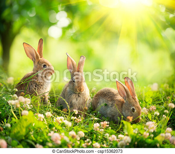 Rabbits. Art Design of Cute Little Easter Bunnies in the Meadow - csp15362073