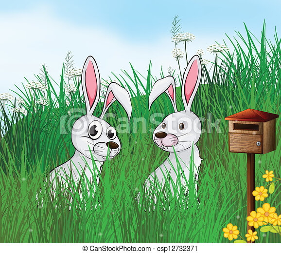 Rabbits near the mailbox - csp12732371