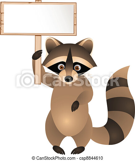 Raccoon with blank sign  - csp8844610
