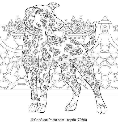 race, dalmatien, chien - csp60172600