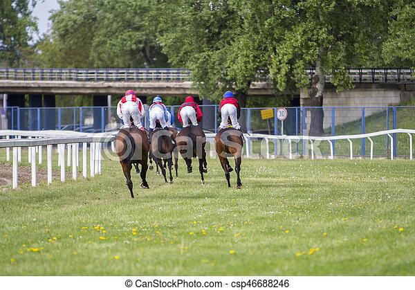Race horses and jockeys during a race - csp46688246
