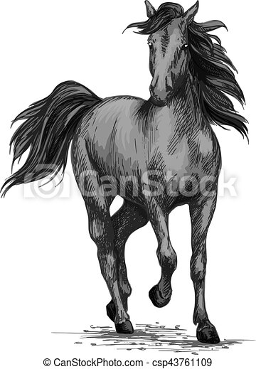 Racing Horse Running On Races Vector Sketch Horse Racing Or