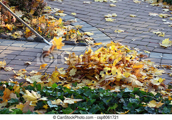 racler part, jardin, homme - csp8061721