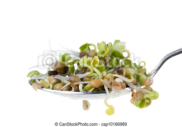 Radish sprouts on a spoon isolated on white background - csp10166989