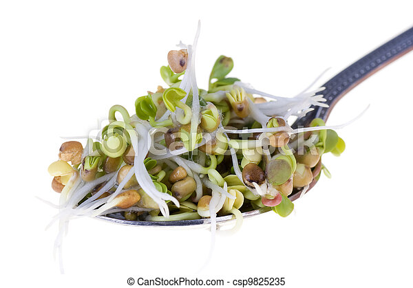 Radish sprouts on a spoon isolated on white background - csp9825235