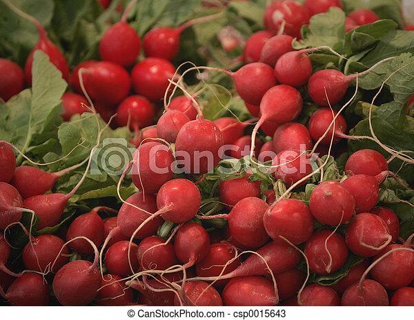 radishes - csp0015643