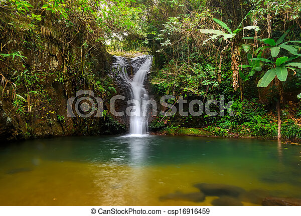 rain forest waterfall - csp16916459
