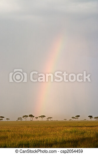Rainbow in the Savannah - csp2054459