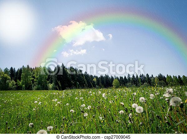 Rainbow over a meadow - csp27009045