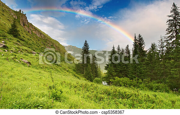 Rainbow over forest - csp5358367