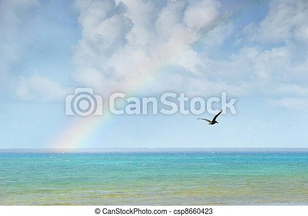 Rainbow over the caribbean - csp8660423