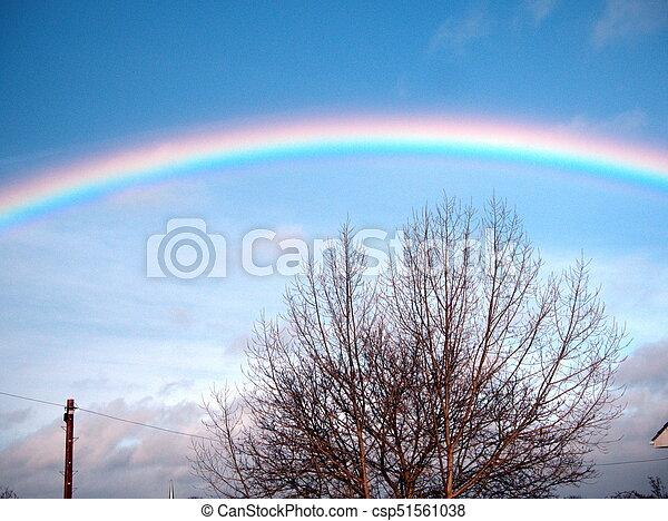Rainbow - csp51561038
