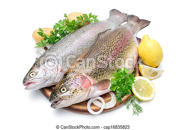 Rainbow trout with fresh herbs isolated on white background - csp16835823