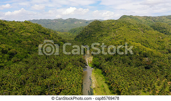 rainforest, leyte, 山の景色, ビュー。, フィリピン。, 島, 川, 航空写真, 山 - csp85769478