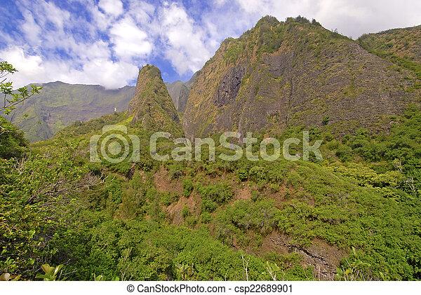 La selva tropical en Maui, Hawaii - csp22689901