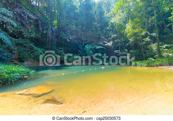 Rainforest natural pool and waterfall - csp25030573