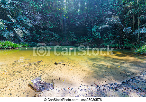 Rainforest natural pool and waterfall - csp25030576