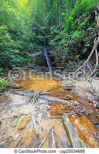 Rainforest natural pool and waterfall - csp25034688