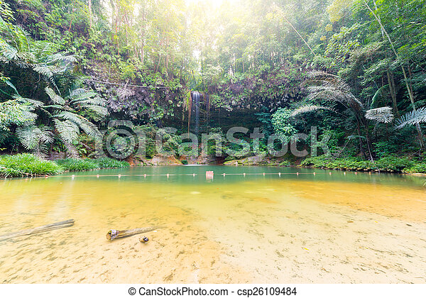 Rainforest natural pool and waterfall - csp26109484