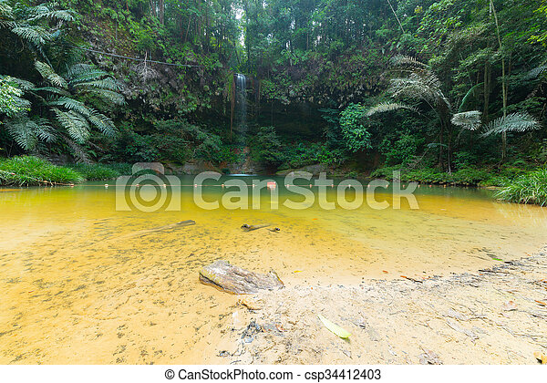 Rainforest natural pool and waterfall - csp34412403