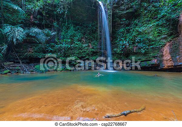 Rainforest natural pool - csp22768667