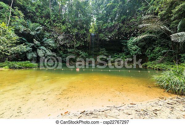 Rainforest natural pool - csp22767297