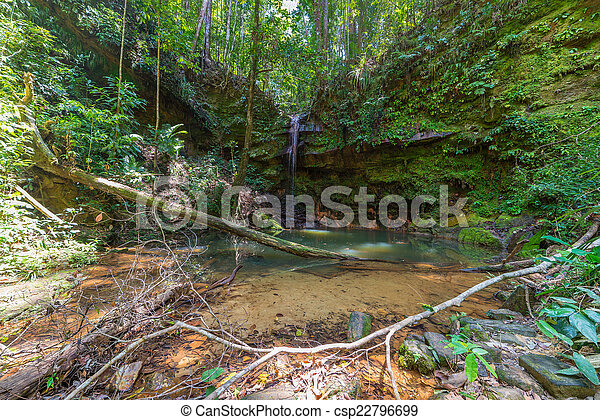 Rainforest natural pool - csp22796699
