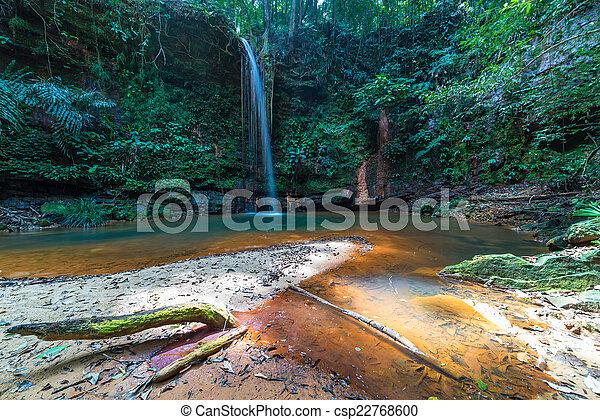 Rainforest natural pool - csp22768600