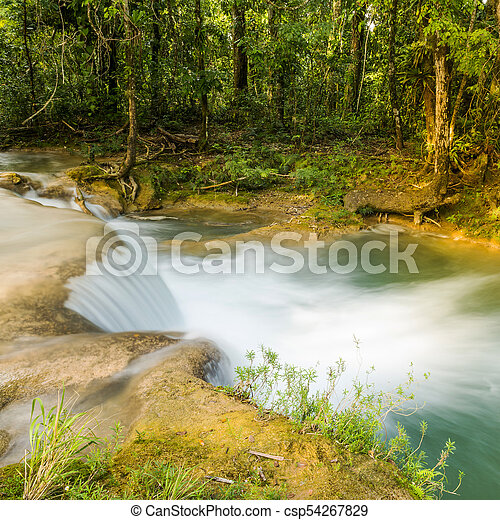 Rainforest Waterfall - csp54267829