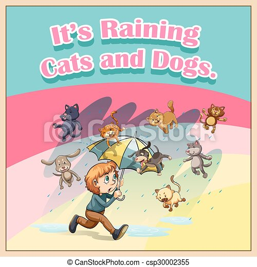 Raining cats and dogs - csp30002355
