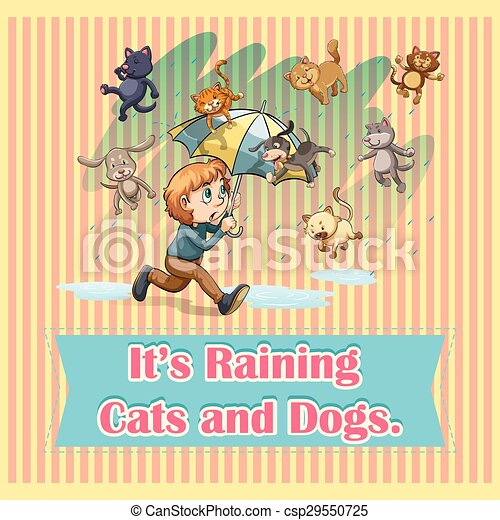 Raining cats and dogs - csp29550725