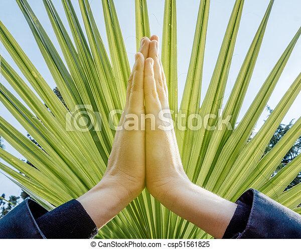 Raised hands pose (anjali mudra)