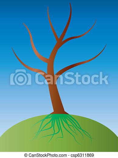 raiz, árvore - csp6311869