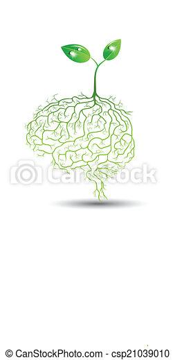 raiz, planta, vetorial, jovem, cérebro - csp21039010