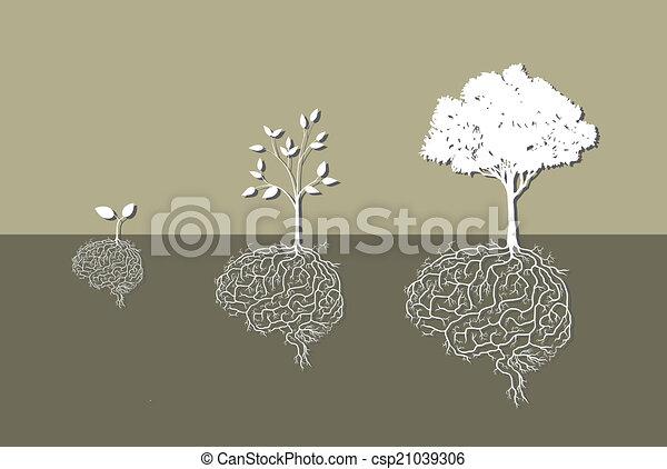 raiz, planta, vetorial, jovem, cérebro - csp21039306