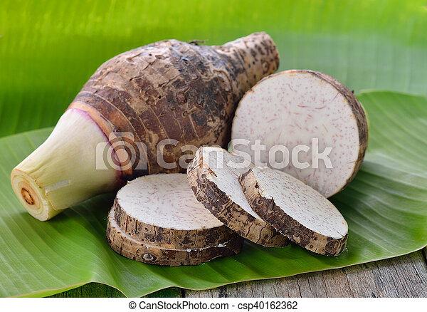 raiz taro - csp40162362