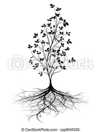 raizes, vetorial, árvore, jovem, fundo - csp9044335