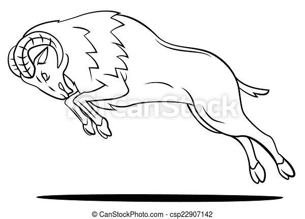 Bighorn Sheep Head Drawing