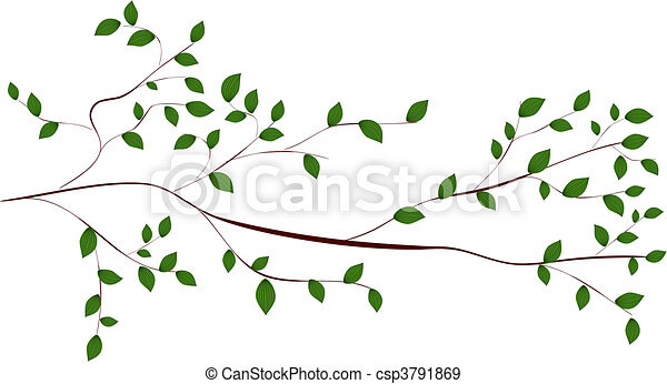 ramo albero - csp3791869